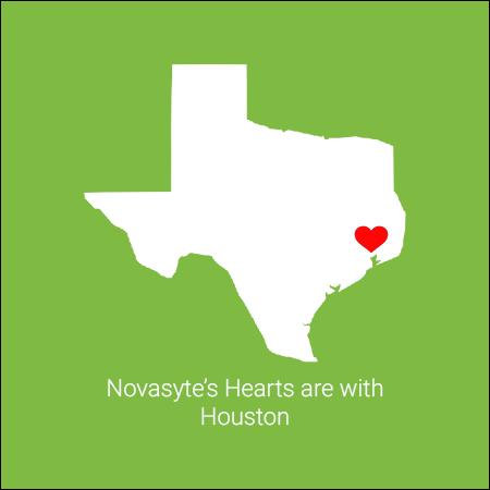 Novasyte-Texas1.png